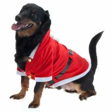 Kerst kostuum voor honden