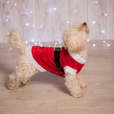 Kerstkostuum voor de hond