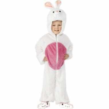 Kinderkostuum konijn