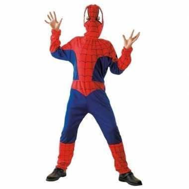 Spinnenheld carnavalskostuum
